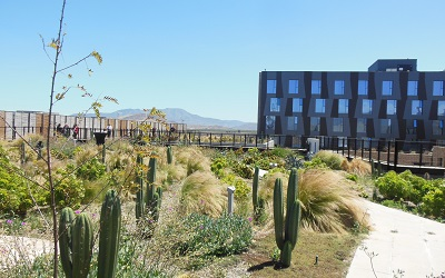 La innovación es el gran desafío que tiene industria del turismo en Chile