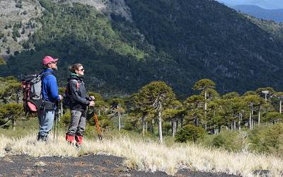 Cómo va a ser el primer viaje de los chilenos post pandemia, según Despegar