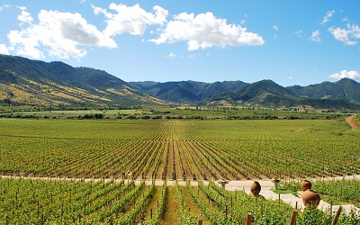 OMT destaca papel del turismo enológico para el desarrollo rural sostenible