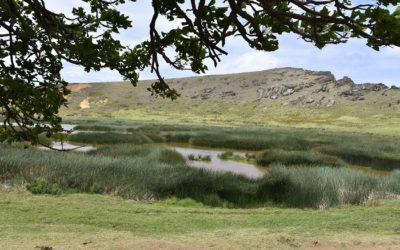 CONAF apoyará a Rapa Nui enmaterias de cambio climático