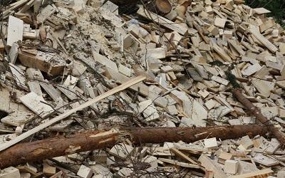 Sectores público y privado se unen para potenciar biomasa en Chile