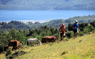 Parque Nacional Puyehue celebrará su segundo  Puyehue Trail Fest