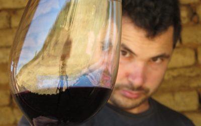 Viña y expertos de UdeC crean primer sistema desmetalizante de vinos