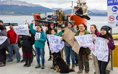 Corte de Punta Arenas frenó inicio de producción de salmonera en Canal Beagle