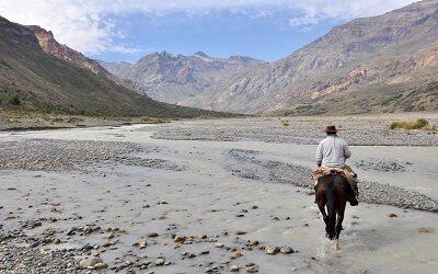"""Naturaleza en cuarentena: cómo visitar la Ruta del Tricahue en modo """"online"""""""