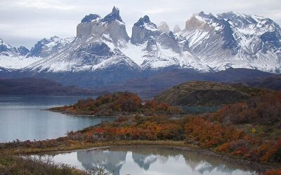 CONAF celebra 50 años al servicio de los bosques y la naturaleza de Chile