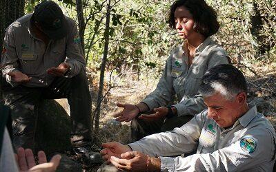 I Congreso Iberoamericano de Salud y Naturaleza se realizará esta semana
