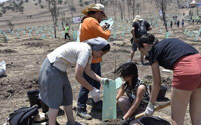 CONAF celebra Día Mundial del Medio Ambiente como actor N°1 en conservación