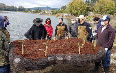 Sistema de islas artificiales para mitigar contaminación de la laguna Torca