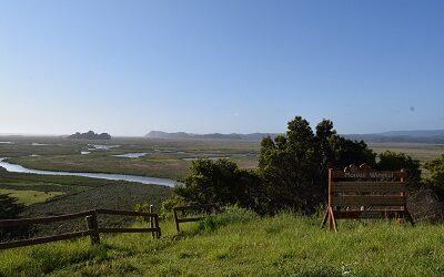 Convención Ramsar declara sitio protegido a humedal Monkul en la Araucanía