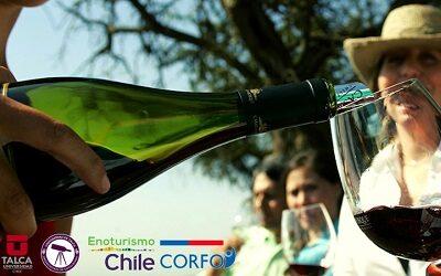 Enoturismo Chile y U. de Talca presentan Catastro Nacional de Enoturismo